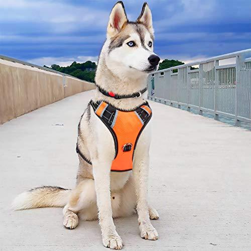 BABYLTRL Big Dog Harness No Pull Adjustable Pet Reflective Oxford Soft Vest for Large Dogs Easy Control Harness (XL, Orange)