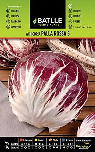 Battle - Semi Ortaggi Radicchio Palla Rossa 5 (3840 Semi)