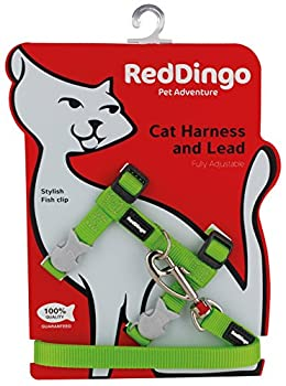 Red Dingo Laisse/Harnais pour Chat Vert