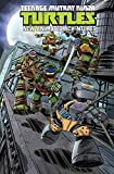 Teenage Mutant Ninja Turtles: New Animated Adventures Volume 3 (TMNT New Animated Adventures)