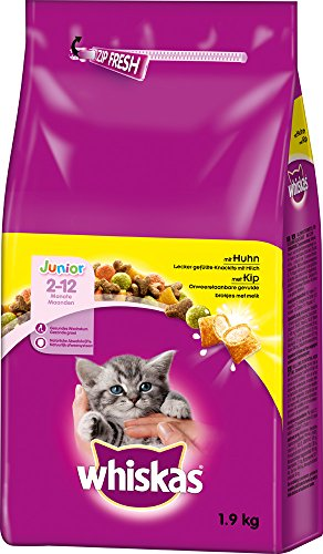 Whiskas Katzenfutter Trockenfutter Junior Kitten <1 mit Huhn, 6 Beutel (6 x 1,9 kg)