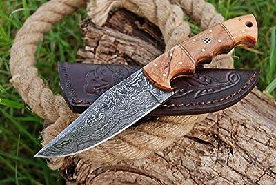 Damascus Hunting Knife - Handmade Survival Knife - Hand forged Fixed Blade Knife, Camping Knife & Survival Knives - Hunting Knives & Bowie Knives with Olive Wood & Rose Wood Handle & Knife Sheath