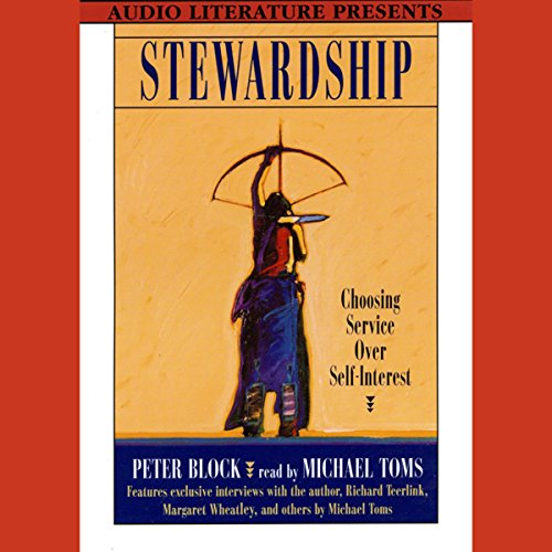 Stewardship audiobook cover art