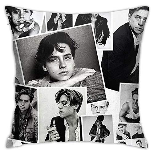 Kissenbezüge Kissen Cole Sprouse Kissenbezug mit verstecktem Reißverschluss für Sofa Sofa Bürobett, doppelseitig bedruckte Kissenbezug Kissenbezug für Heimtextilien (Twin Sides) 18inch18inch