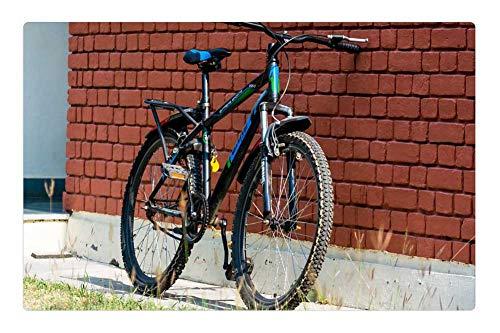 LESGAULEST Doormat Floor Rug/Mat (23.6 x 15.7 inch) - Bike Bicycle Cycle Mountain Bike Fitness Chain