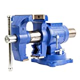 Forward DT08125A 5-Inch Heavy Duty Bench Vise 360-Degree Swivel Base and Head with Anvil (5')