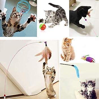 Dorakitten chaton jouets 16 PCS Jouets pour chats pour chats d'intérieur Pet Toy Set Chat drôle plume Baguette Interactive Cat Balls Jouets pour chats d'intérieur
