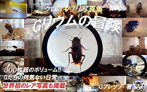 Gリウムの冒険‐クロゴキブリ写真集‐
