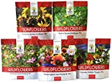 Bulk Wildflower Seeds Variety Pack - 5 Large Packets 5 Different Mixes - Over 1/4 Pound - More Than 30,000 Open Pollinated Seeds