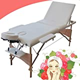 Portable Massage Table, Lightweight Couch Bed, Folding Beauty Couch Bed, Adjustable Plinth Therapy