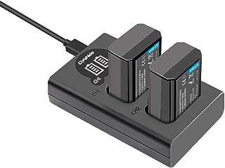 NP-FW50 バッテリーパック Onshida 互換バッテリー(大容量 1200mAh / 8.8W)2個 +充電器キット セット Alpha a6500 a6300 a6000 a5100 a7II a7RII a7SII a7S a7S2 a7R a7R2 A3000 A33 A35 A37 A55 RX10など対応 2充電ポート(Micro USB & USB-C)LCD電量表示