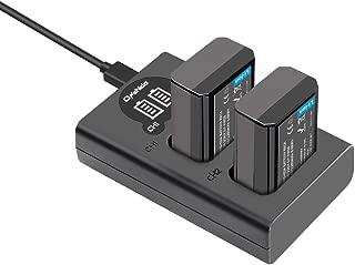 NP-FW50 バッテリーパック Onshida np fw50 互換バッテリー(大容量 1200mAh / 8.8W)2個 +充電器キット セット Alpha a6500 a6300 a6000 a5100 a7II a7RII a7SII a7S a7S2 a7R a7R2 A3000 A33 A35 A37 A55 RX10など対応 2充電ポート(Micro USB & USB-C)LCD電量表示
