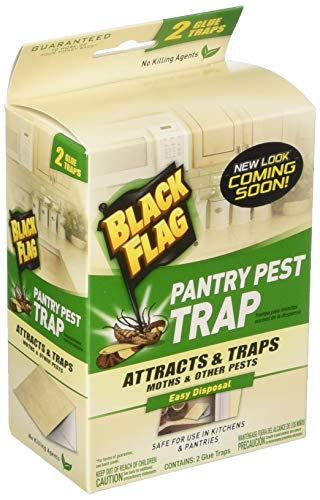 Black Flag Pantry Pest Traps  8 Total4 Packages with 2 Traps Each