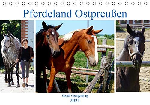 Pferdeland Ostpreußen - Gestüt Georgenburg (Tischkalender 2021 DIN A5 quer)