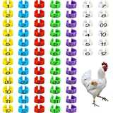 Bird Chicken 20mm Foot Ring Bands - Chicken Identification Leg Bands Numbered Clip Poultry Leg Bands Tags for Small Poultry Chicken Pigeon Dove Chicks Bantam Quail Lovebirds Finch Mix Color 72PCS