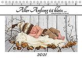 Aller Anfang ist klein - Babykalender mit Noah (Tischkalender 2021 DIN A5 quer)