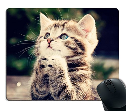 Smooffly Cute Cat is Praying Unique Design Lovely Kitten Personality Mouse Pad