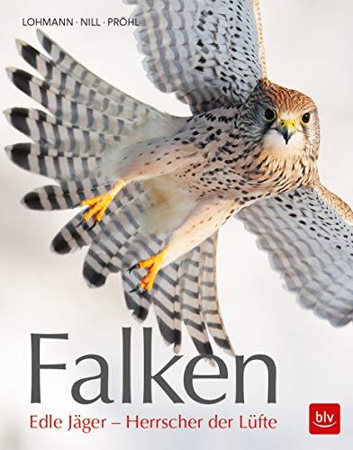Falken: Edle Jäger - Herrscher der Lüfte