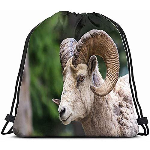 Sport Backpack,Bighorn Sheep Ovis Canadensis Animals Wildlife Adult Nature Drawstring Backpack Bag Sackpack Gym Sack Sport Beach Daypack For Girls Men & Women Teen Dance Bag Cycling Hiking Team T