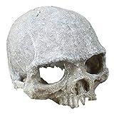 Hewnda Aquarium Decor Resin Artificial Head Skeleton Decoration - Aquarium Otaru Aquarium Decorative Cave Landscape Pet Reptile House