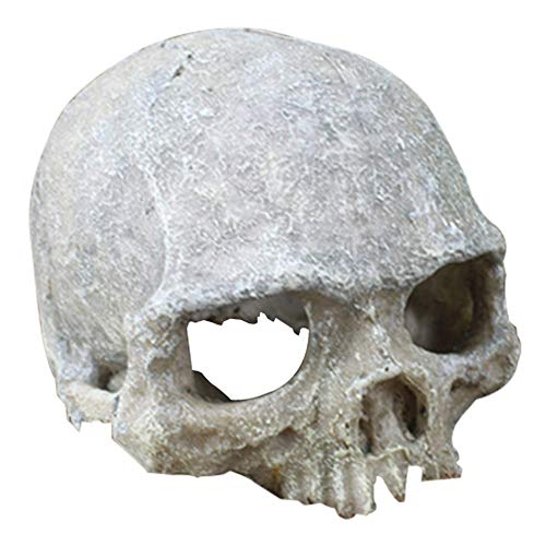 Hewnda Aquarium Decor Resin Artificial Head Skeleton Decoration - Aquarium Otaru Aquarium Decorative Cave Landscape Pet Reptile House