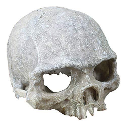 ZYMY Acuario decorado esqueleto agujero resina esqueleto esqueleto esqueleto esqueleto adorno acuario decorado cueva paisaje mascota casa reptil (cráneo humano artificial)