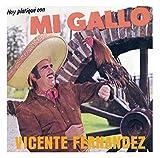 Songtexte von Vicente Fernández - Hoy platique con mi gallo