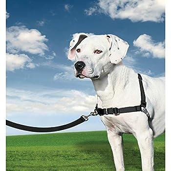 PetSafe Harnais pour Chien Moyen Easy Walk (M) - Harnais Ajustable et Anti-Traction - 4 points de Réglage pour un Confort Maximal - Noir
