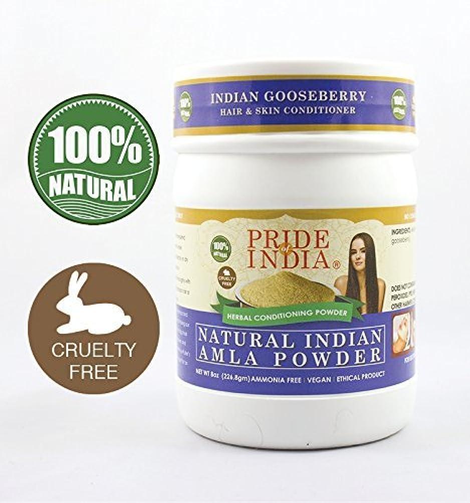 要塞鎖チョップPride Of India インドのアムラスグリハーブの髪や皮膚コンディショニングパウダー