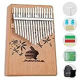 ankuka kalimba 17 tasti, portatile professionale pianoforte, accessori con suonare istruzioni, tuning hammer, finger protettiva, africana tradizionale strumento per adulti