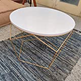 PRITI Golden Dreamer Morgan Coffee Table Iron Wooden Table Side Table End Table Living Room Table