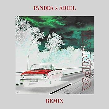 Tampa (PANDDA x Ariel Remix)
