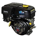 Wiltec LIFAN 177 Motore a Benzina 6,6 kW 9 CV 270 CCM con Frizione a Bagno d'olio e riduzione 2:1