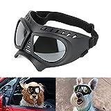 ZEKOO Dog Apparel & Accessories