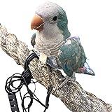 HEZHUO Pañales para pájaros, loros, trajes de vuelo de pájaros, pañales impermeables reutilizables para mascotas (S, marrón)
