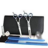 ZWJ-JJ 5,5 pulgadas tijeras de peluquería Conjunto, plana + Diente de tijeras de peluquería Tijeras Set (Color: Plata)