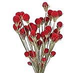 Chytaii Fleurs Séchees Naturelles Craspedia Rouge Bouquet Fleur Artificielle Decoration pour Vase DIY Arrangement Floral Fête Table Maison-53cm