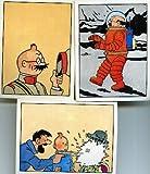Tintin - Panini - lot de 3 images (90, 111, 144)