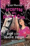 Angel y los caballos salvajes (Secretos Del Pony Club)