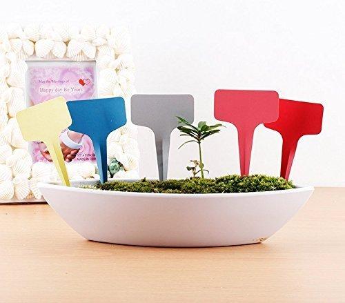 """G2Plus 100Stk. Mini T-Form Plastik Pflanzenstecker StecketikettenBeschriften Pflanzschilder Schilder 6CM * 10CM Sind Praktisch für Alle """"Gärtner"""" (Weiß) - 5"""