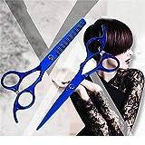 Tijeras de peluqueria profesional Tijeras de peluquería profesional de 6.0 pulgadas Tijeras de corte fino Tijeras planas Set de belleza Color negro puro Tijeras de peluquería-6 pulgadas