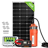 Best Solar Pumps - ECO-WORTHY Solar Well Pump Kit with Battery Backup Review