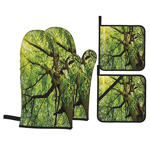 Forest Home Decor Warm Spring Sun Through Old Beech In Timberland Fresh Alley Canopy Outdoor Green Oven Gloves and Pot Holders Set Personalized Barbecue Cooking Mitts