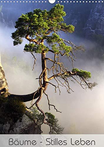Bäume - Stilles Leben (Wandkalender 2021 DIN A3 hoch)
