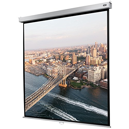 celexon manuell ausziehbare Heimkino- und Business-Rollo-Beamer-Leinwand 4K und Full-HD mit Slow-Return Professional Plus - 120 x 120 cm - 1:1