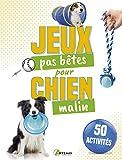 50 jeux pas bêtes pour chien malin