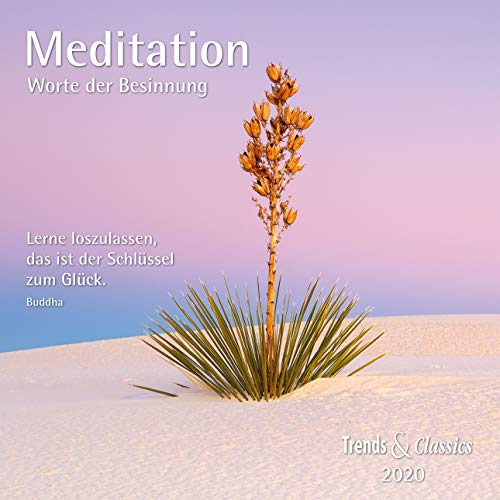 Meditation 2020 - Broschürenkalender - Wandkalender - mit herausnehmbarem Poster und Zitaten - Format 30 x 30 cm: Worte der Besinnung