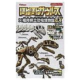 ほねほねザウルス×福井県立恐竜博物館EX [全4種セット(フルコンプ)]