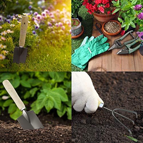 Pure Garden 75-08002 8 Piece Garden Tool and Tote Set Repel-pesticides, 7x4.5, b