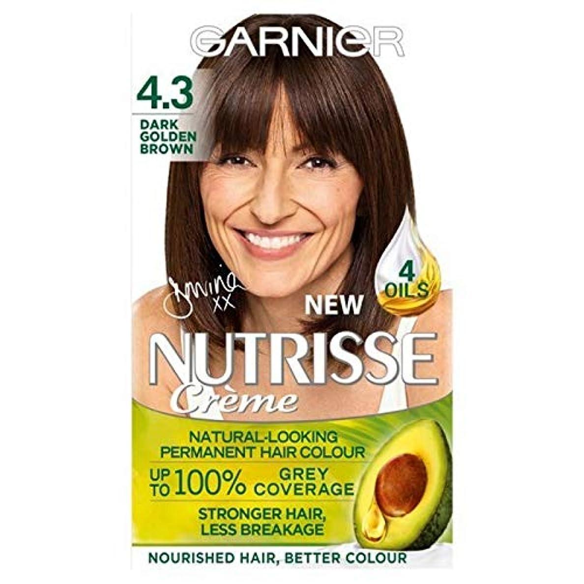 確認するドリル極めて[Garnier ] 4.3濃い黄金色ガルニエNutrisseパーマネントヘアダイ - Garnier Nutrisse Permanent Hair Dye Dark Golden Brown 4.3 [並行輸入品]